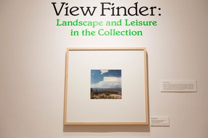 View Finder: Landscape and Leisure in the Collection