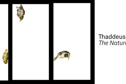 Thaddeus Holownia: The Natural Order