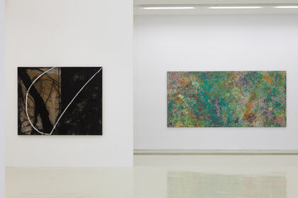 ENCOUNTERS: John McLean · Wang Jian