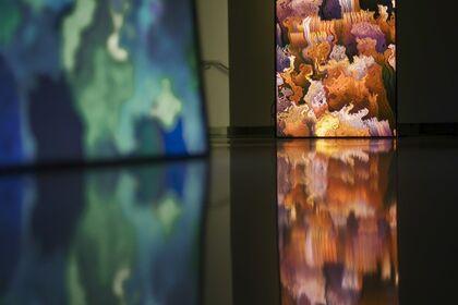 Daniel Canogar: Mirrors