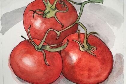 Mary Lawler - Watercolors