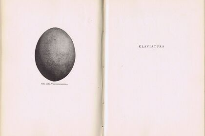 Klaviatura | Petra FERIANCOVÁ