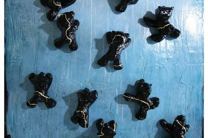 "Judith Kindler ' Reflections on the Bears"""