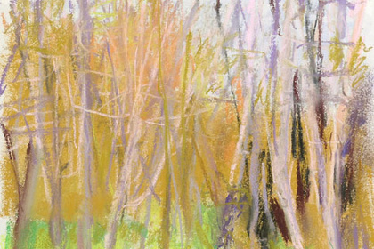 WOLF KAHN | paintings and drawings