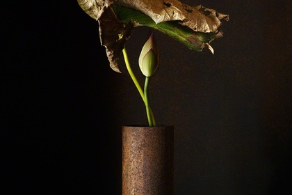 A Stage - Keiichiro Muratmasu - Photographe
