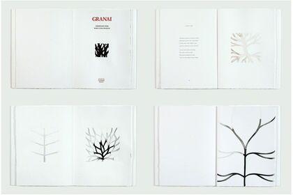 Artist Books by Edizioni Canopo