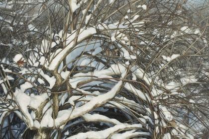 Stephanie Bush: 20 Years, An Artist's Evolution