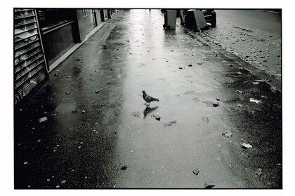 "Yoichiro Nishimura Solo Exhibition ""Paris"""