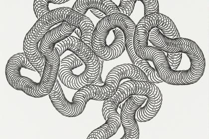Tara Donovan: Slinkys