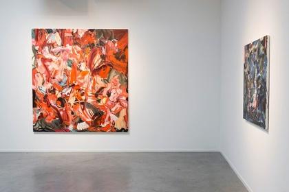 Sherié Franssen | Undertow