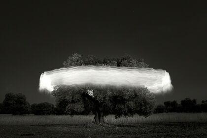 Ugo Ricciardi. Nightscapes