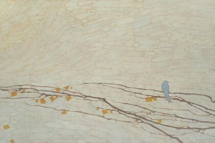 David Grossmann: Haven