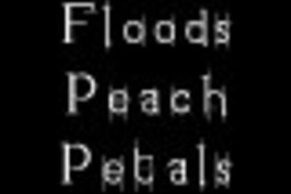 """""""Spring Floods and Peach Petals"""" 春季的洪水与桃花瓣"""