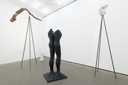 Stella Hamberg: à travers la tête