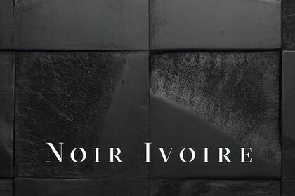 Noir Ivoire / Jean Paul Blais