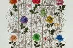 50 Years of Painting in a Single Canvas: Roland Reiss's Floral Works
