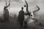 "Sebastião Salgado's ""Genesis"" Explores Untouched Places and Peoples"