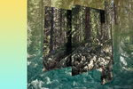 Artist Mark Dorf Applies Scientific Methods to Manipulate Photos of the Colorado Rockies