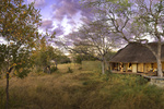 Extraordinary Journeys: 8 Nights of Art and Adventure in South Africa