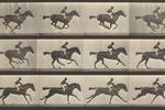 How Eadweard Muybridge Gave Us the Moving Image