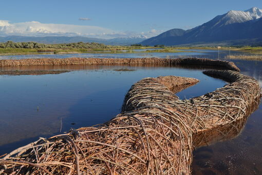 The Artist Duo Whose Land Art Is Rejuvenating the Environment