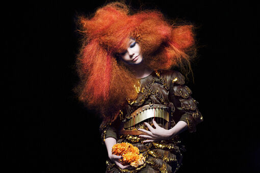 Behind the Scenes of Björk's Most Iconic Images With Photographer Inez van Lamsweerde