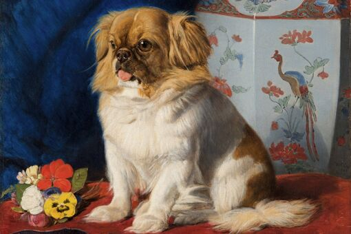 I'm Obsessed with This Painting of Looty, the Famous Pekingese