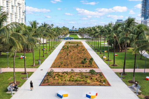 Abraham Cruzvillegas Is Growing an Oasis of Healing Plants in a Miami Park