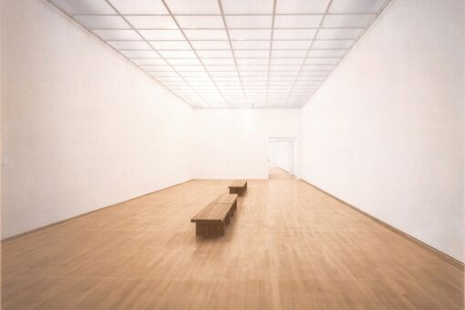 How the White Cube Came to Dominate the Art World