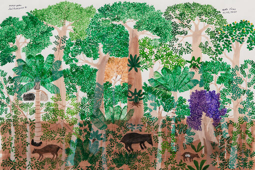 Abel Rodríguez Recreates the Rainforests He Used to Call Home
