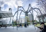 An Arachnophobe Faces Louise Bourgeois's Iconic Spiders