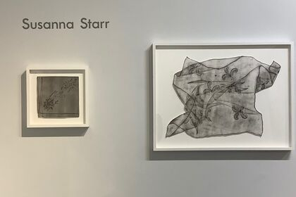 Project Space: Susanna Starr