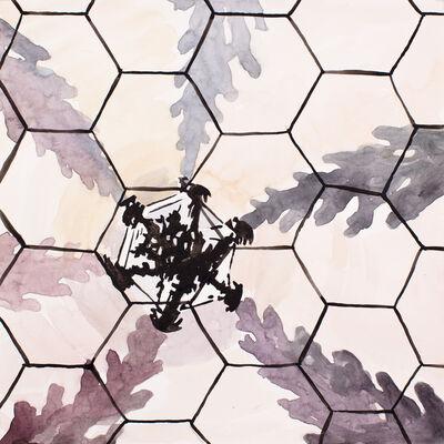 Lee Essex Doyle, 'Cini Hexagon, Venice', 2014