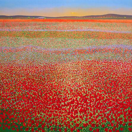 Ton Dubbeldam, 'Poppy Field Sunset', 2018