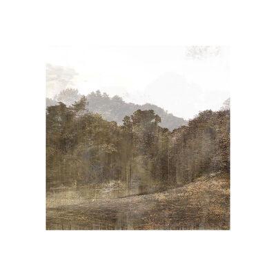 Overlap, 'Trees & Keys - Mix 1.4, 18341 : Print', 2016