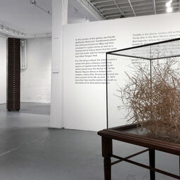 PROTO Gallery