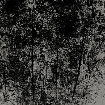 Elena Lyakir, 'Forget Me Now', 2016