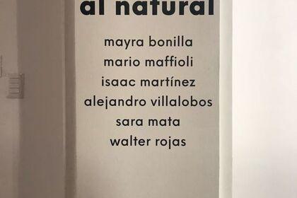 Al Natural - Nature Itself