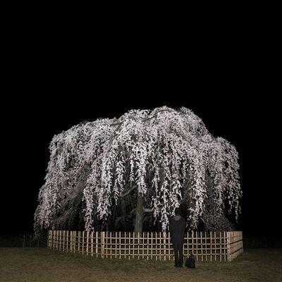 Sascha Weidner, 'Nightcall II', 2013