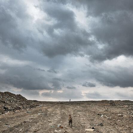 Chandan Gomes, 'Untitled'