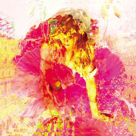 Lisa Holden, 'Pink Poppies', 2003/2006