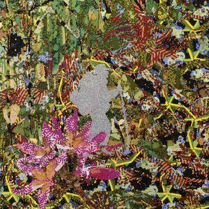 Avinash Veeraraghavan, 'Where Is the Line', 2015