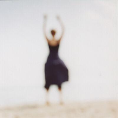Virginia Mak, 'Hidden Nature 13', 2006
