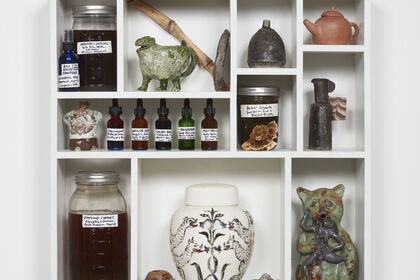 Materia Medica, Curated by Kelly Akashi