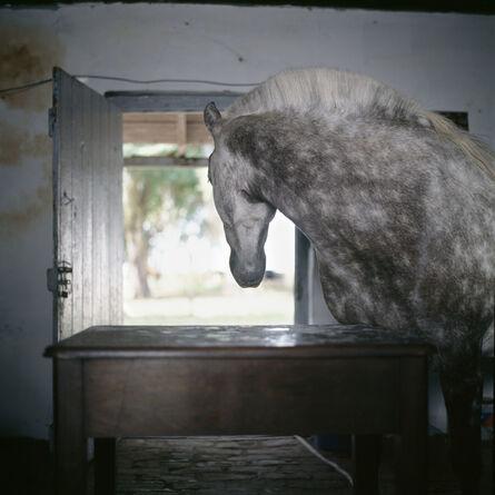 Alessandra Sanguinetti, 'Buenos Aires Province, Argentina, 2001', 2001