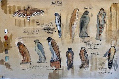 "Jane Rosen ""Bird Book"""