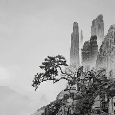 Yang Yongliang 杨泳梁, 'Old Pine', 2016