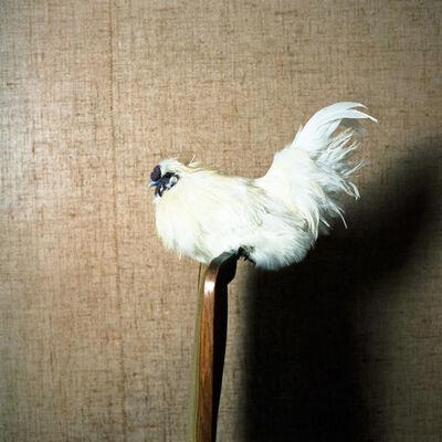 Hellen van Meene, 'Untitled #388', 2012