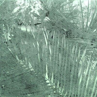 Katsutoshi Yuasa, 'Tristes tropiques #1', 2015