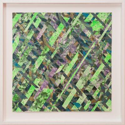 Raymond Salvatore Harmon, 'Vanity as Image Filter ', 2015